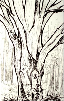 Arbre en dessin acrylique huile aquarelle - Dessin arbre nu ...